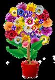 flowers-2731336_640_modificato.png
