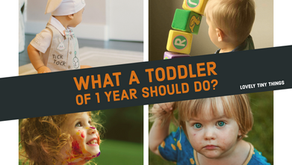 What a Toddler of 1 year should do?