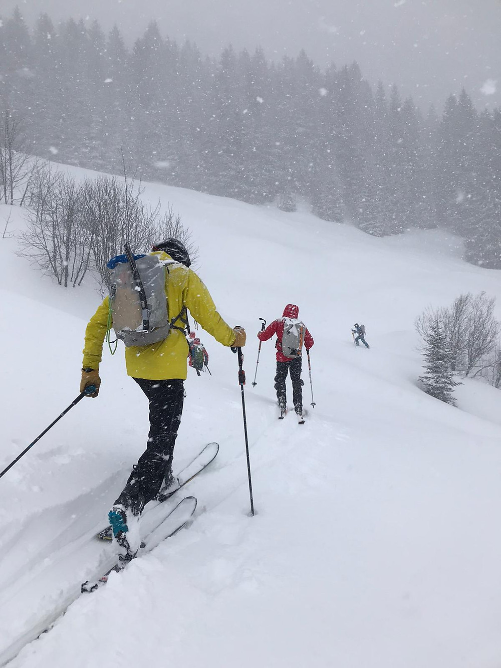 avalanche; formation; Annecy; guide de haute montagne; anena;