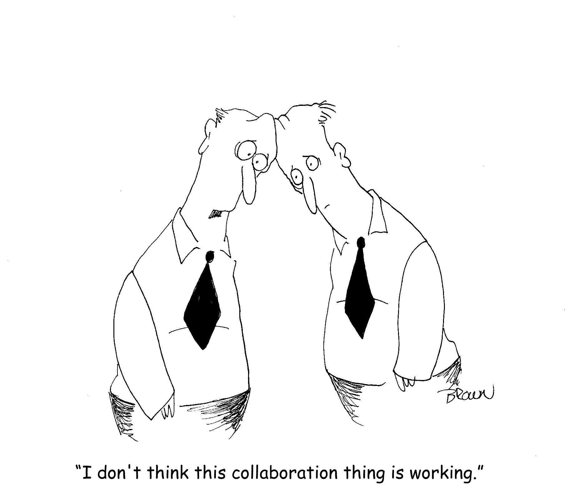 collaborate not working.bmp