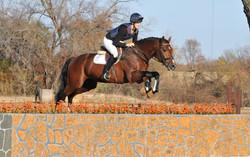 Lord Adonis - Stallion Test