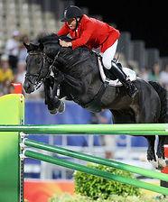 Horse_Zorro-big.jpg