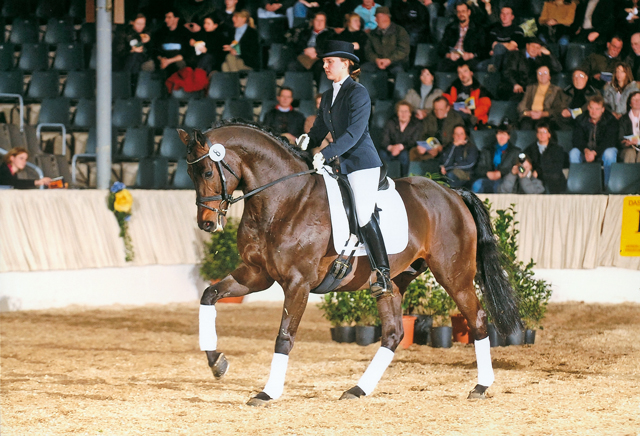 don ron dressage