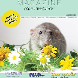 Spring 2018 Digital Edition