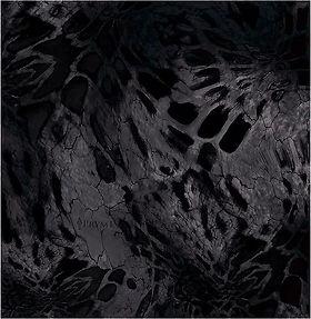 Blackout Prym1.JPG