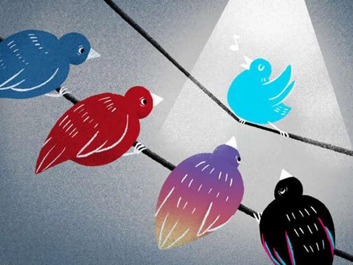 The New Twitter Blue Subscription Program