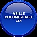 Veille documentaire CDI LUT