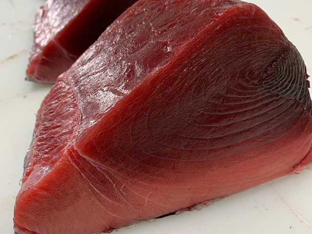 Incredible Southern Bluefin Tuna
