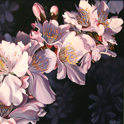 "Marie Cameron - Cherry Blossom Branch 12x12"""