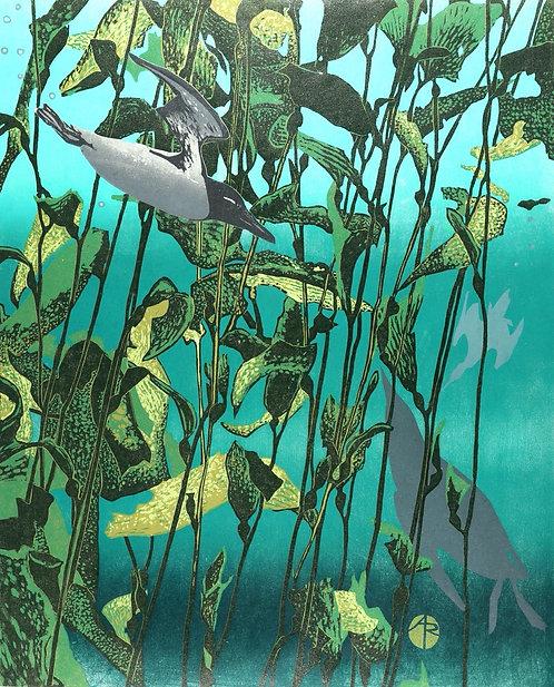 "Andrea Rich - Diving Murre, 27x24"""