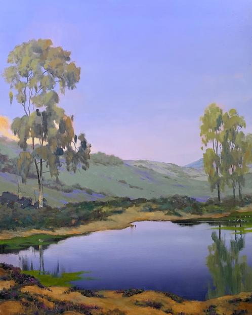"""Ed Penniman - Eucalyptus Reflections III, 40x30"""""""