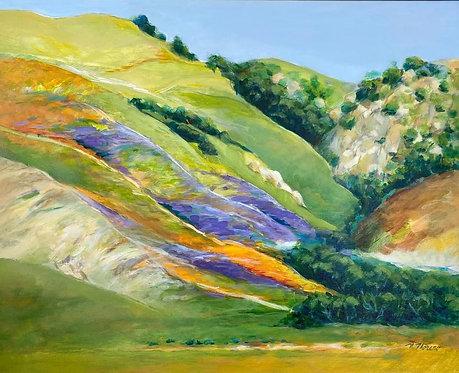 "Merlyn Moreno - Blooming Hillside, 24x30"""