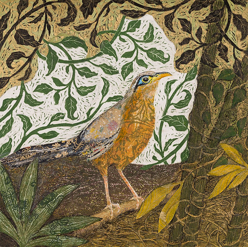"""Anita Heckman - Lesser Ground Cuckoo, 12x12"""""""