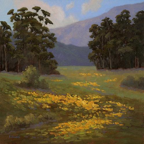 Ellen Howard - Along the Golden Trail, 20x20 inches