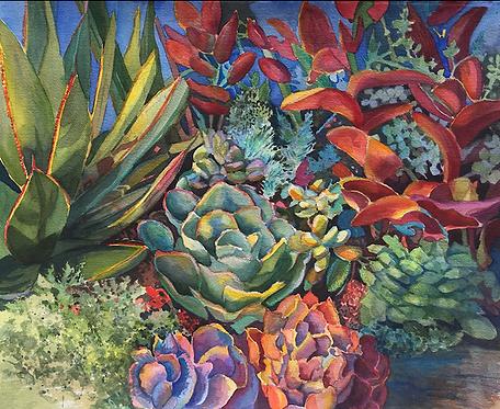Sally Bookman - Succulent Garden II, 22x26 inches