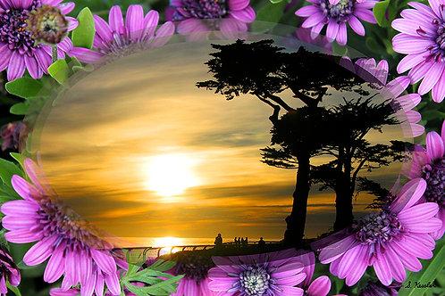 "Susan Kessler - Purple Flowered Sunset on West Cliff, 20x30"""
