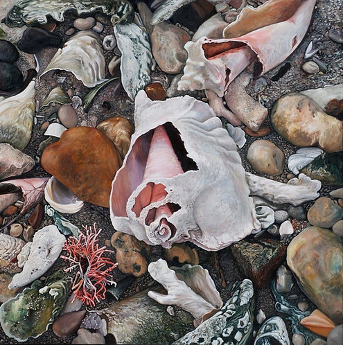 Marie Cameron - Shell Grave 48x48""