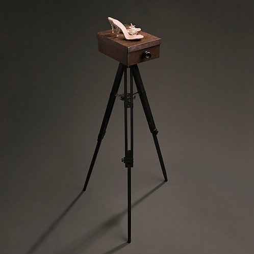 Rose Sellery - Shoe Box