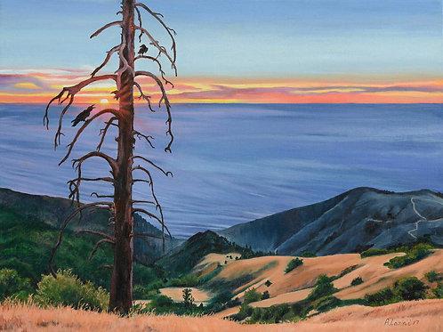 "Alanni Lanni - Big Sur Ridge Sunset, 14x18"""