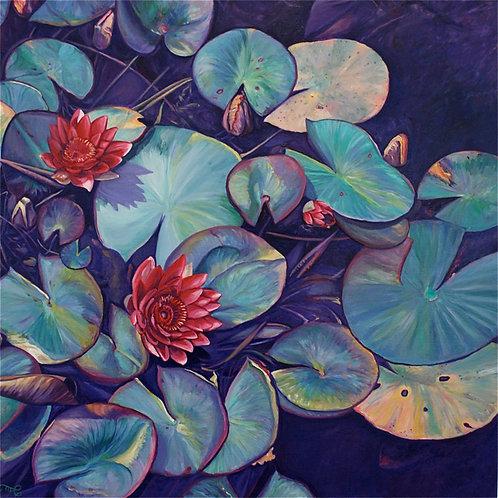 "Marie Cameron - Pond Lily Magenta, 24x24"""