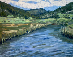Kent Augason - Waddell Creek, Before the Fires