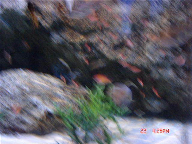 DSC01389_R.jpg