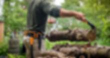 forestry tools.jpg