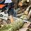"Thumbnail: Gardencare CS5600 56cc 50cm/20"""