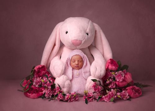 CompositeKit-BunnyBaby_Kennedy_Print.jpg