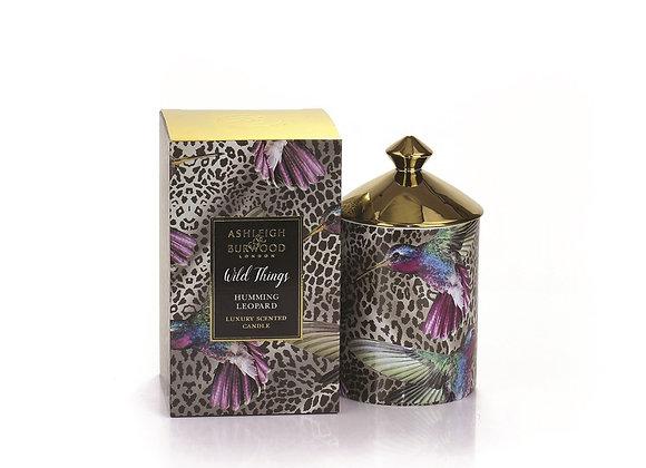 Ashleigh & Burwood Wild Things Candle - Humming Leopard - Black Raspberry
