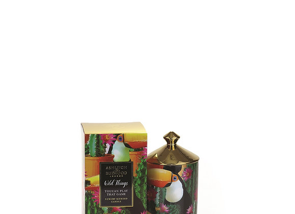 Ashleigh & Burwood Wild Things Candle - Toucan Play That Game - Mango & Nectarin