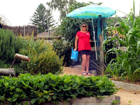 Creative Harvest 2019 - Marg's Garden