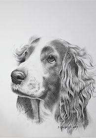 pencil drawings of people and pets