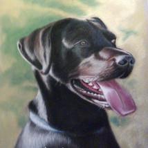 pastel dog