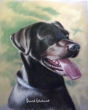 pastel dog portrait 2