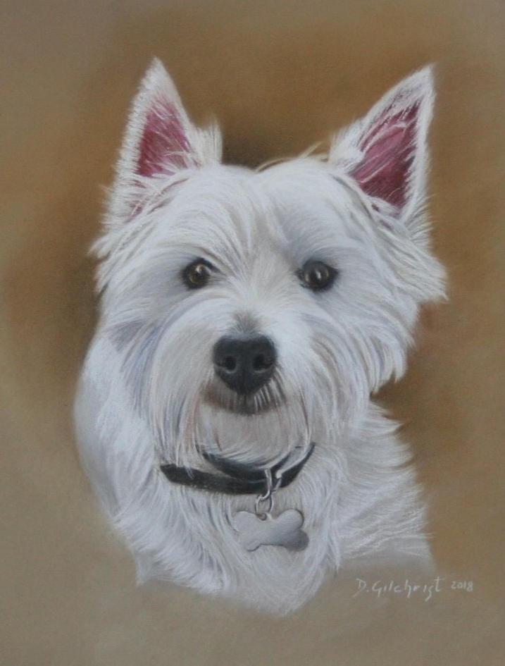 pastel portrait dog drawing