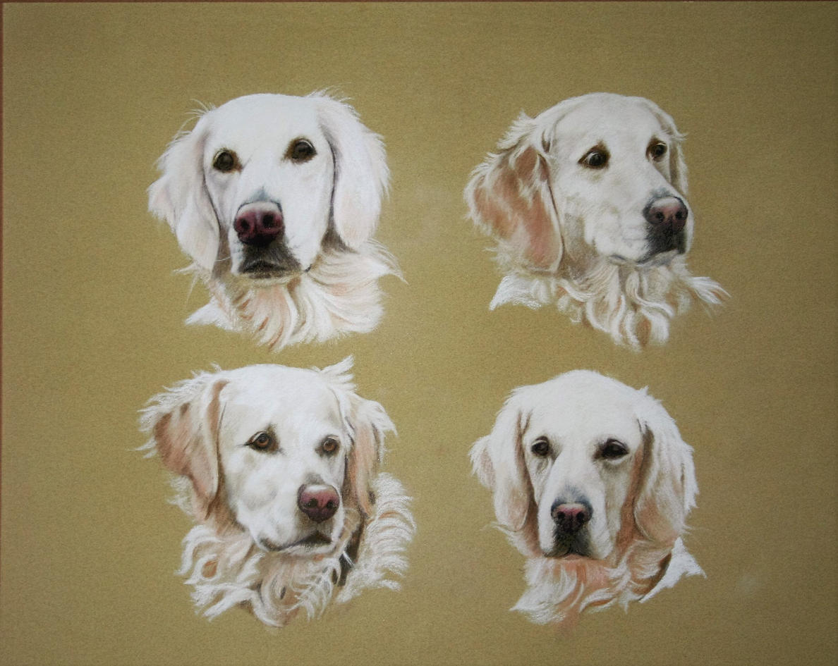 pastel portraits of dogs