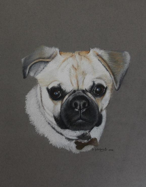pastel dog portrait