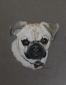 pastel dog drawing