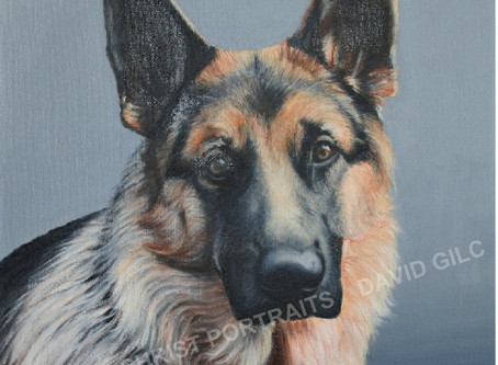 Artist Dog Portraits You Will Love