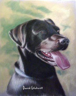 pastel pet portrait