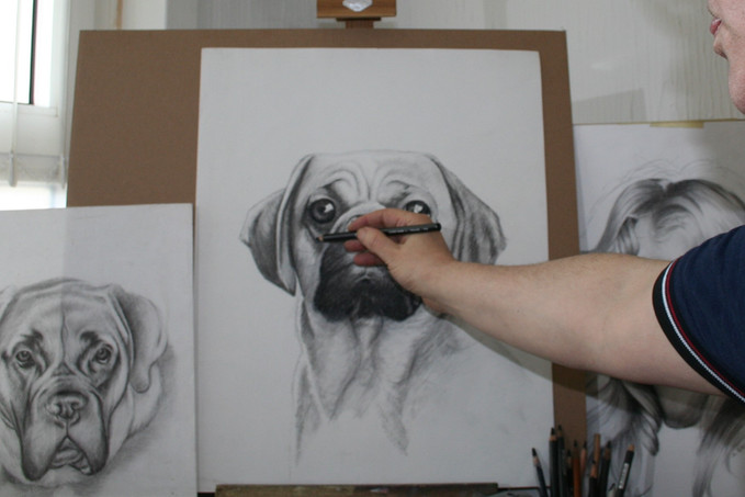 draw portraits from photos