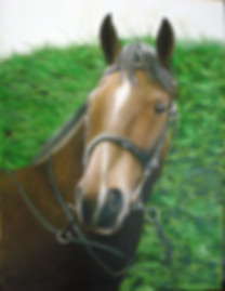 picture to painting horse