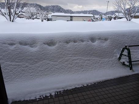 大雪のため、うるしの里会館は臨時休館とさせていただきます【2/6~2/9】