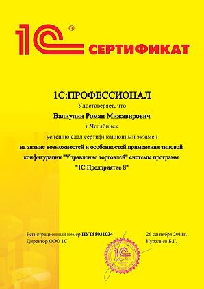 ПРОФ Торговля-1.png