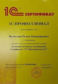 Профессионал 1С Челябинск