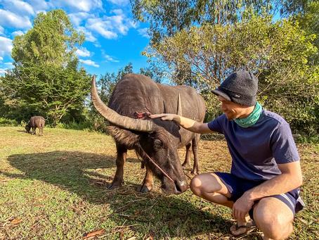 Living On A Farm In Rural Thailand