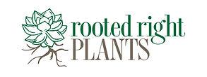 RootedRight.jpg
