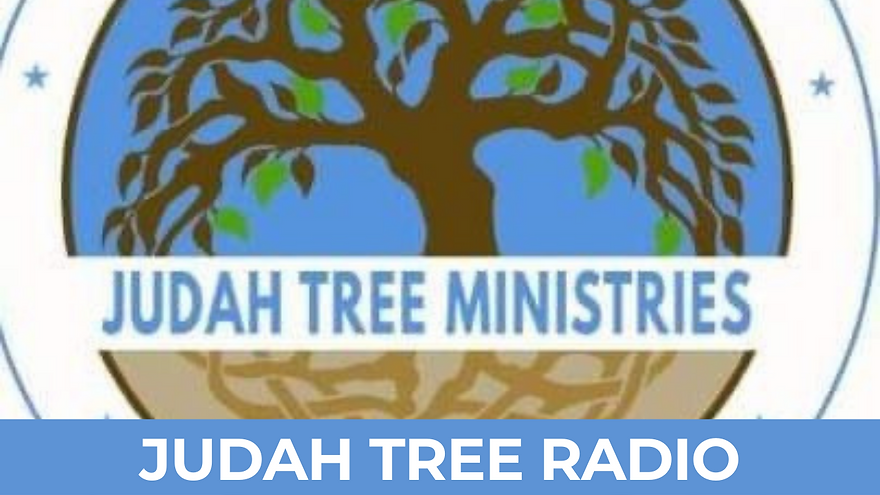 JUDAH TREE RADIO.png