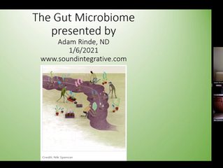 Gut Microbiome Presentation at Lake Washington Physical Therapy
